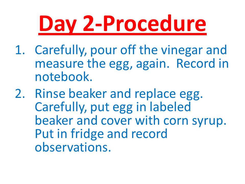 Day 2-Procedure Carefully, pour off the vinegar and measure the egg, again. Record in notebook.