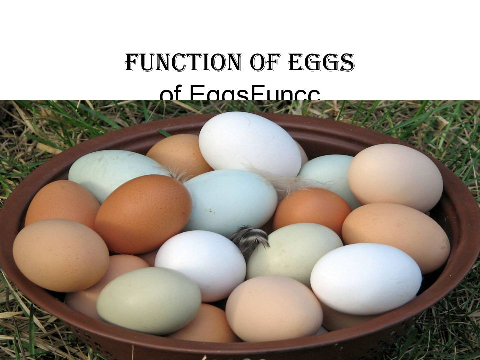Function of eggs of EggsFuncc