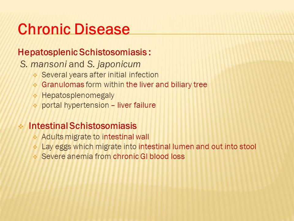 Chronic Disease Hepatosplenic Schistosomiasis :