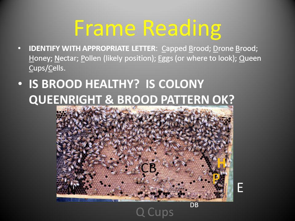 Frame Reading