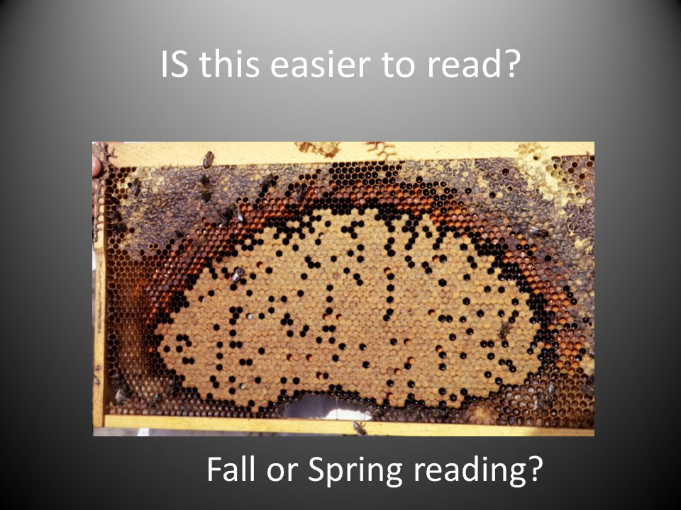 IS this easier to read Fall or Spring reading