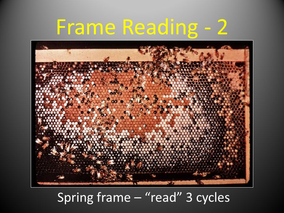 Frame Reading - 2 Spring frame – read 3 cycles