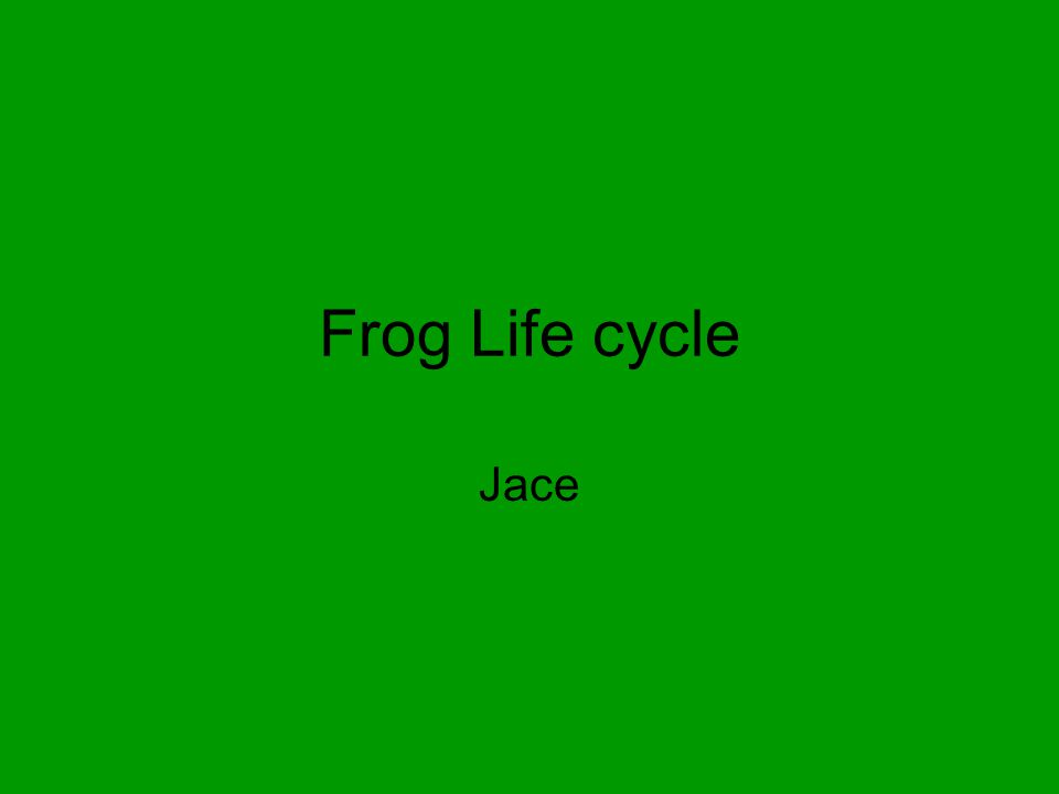 Frog Life cycle Jace
