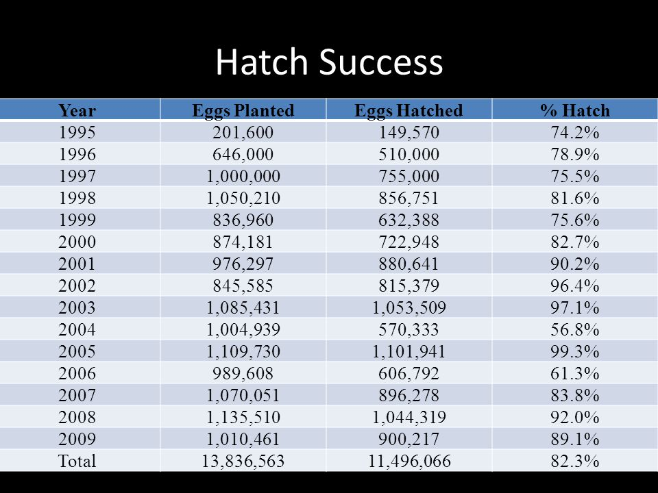 Hatch Success Year Eggs Planted Eggs Hatched % Hatch 1995 201,600