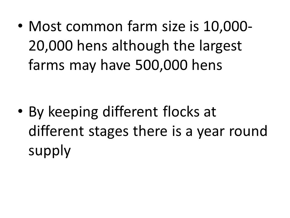 Most common farm size is 10,000-20,000 hens although the largest farms may have 500,000 hens