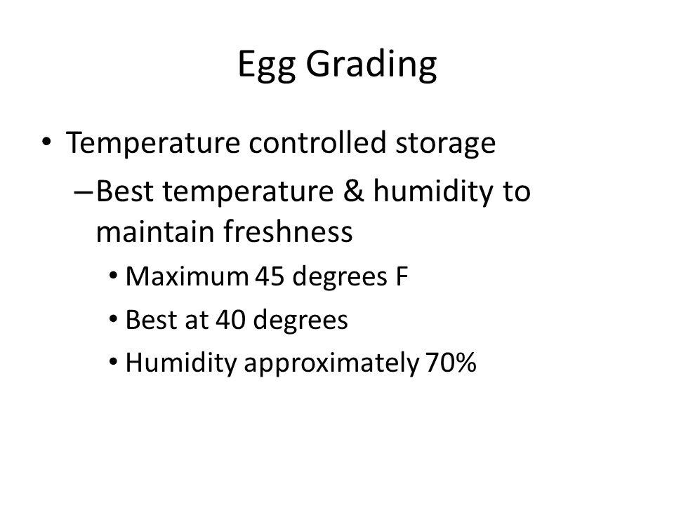 Egg Grading Temperature controlled storage