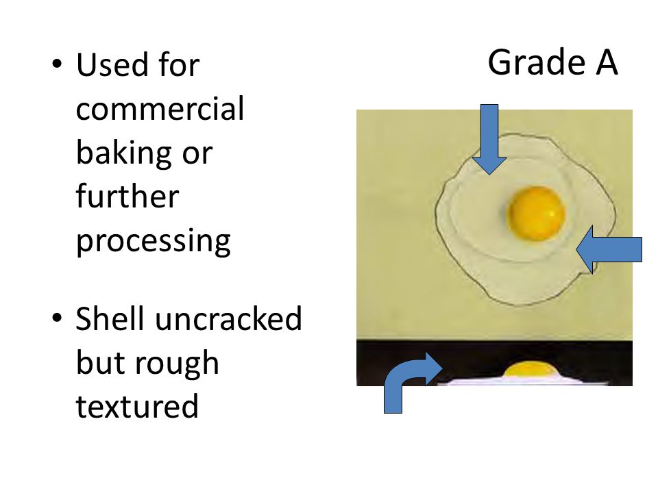 Grade A Used for commercial baking or further processing