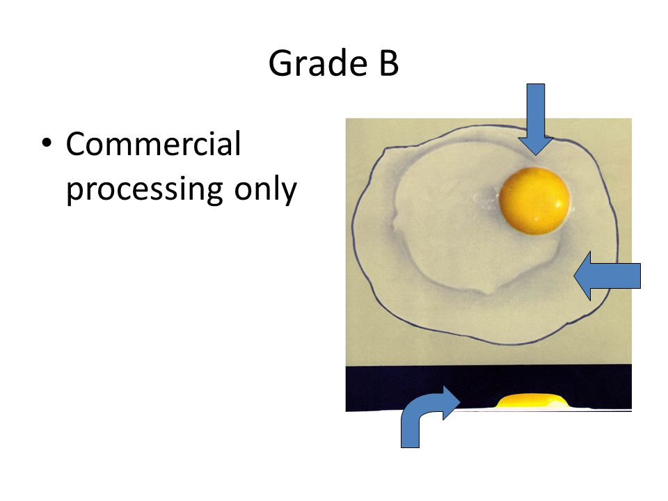Grade B Commercial processing only