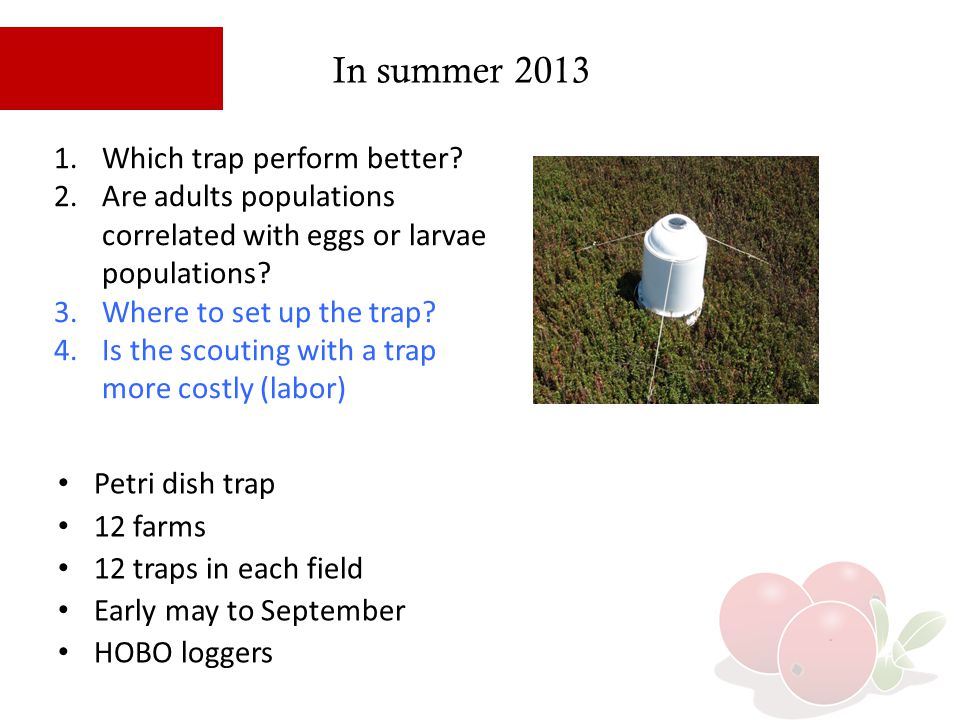 In summer 2013 Which trap perform better