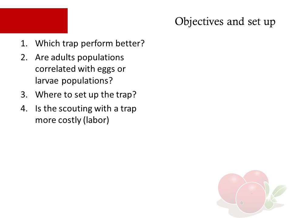 Objectives and set up Which trap perform better