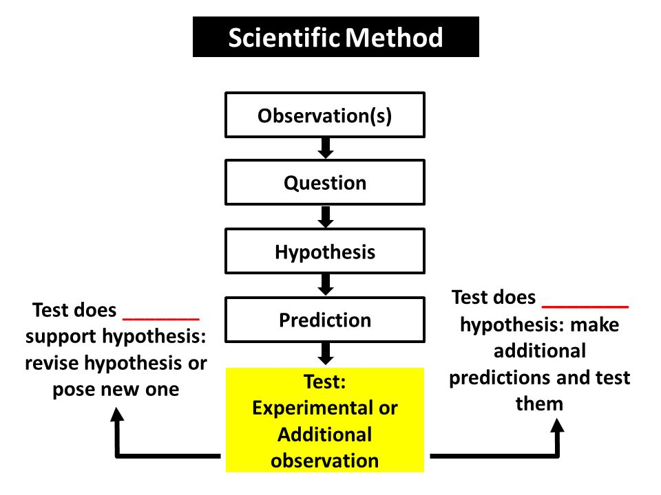 Scientific Method Observation(s) Question Hypothesis Test does _______