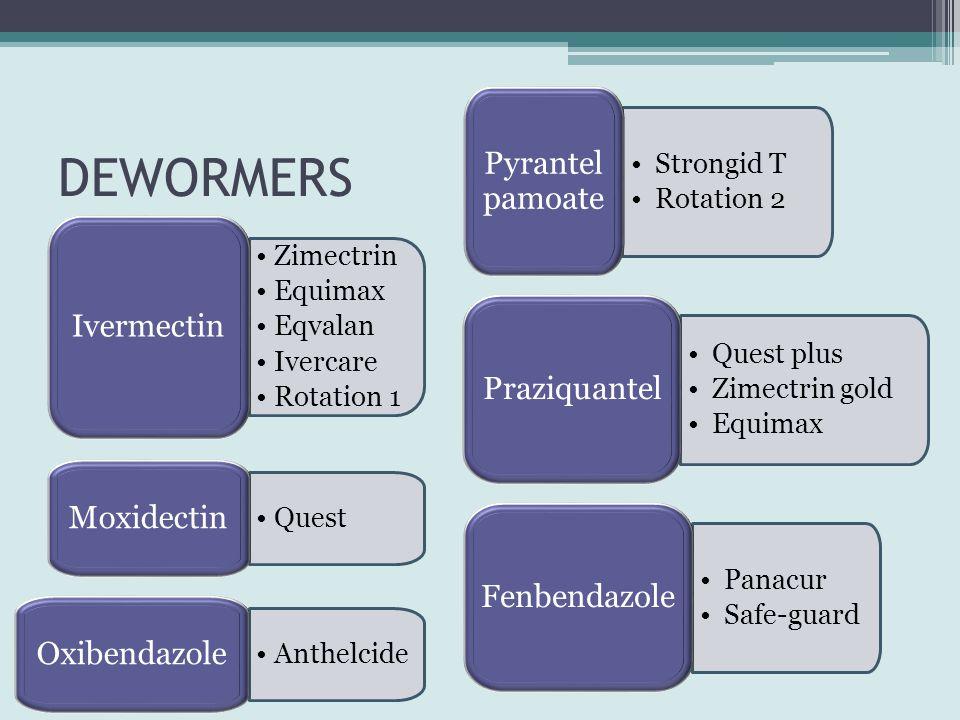 DEWORMERS Pyrantel pamoate Ivermectin Praziquantel Moxidectin