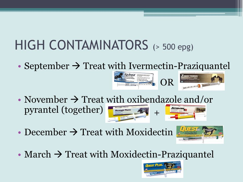 HIGH CONTAMINATORS (> 500 epg)