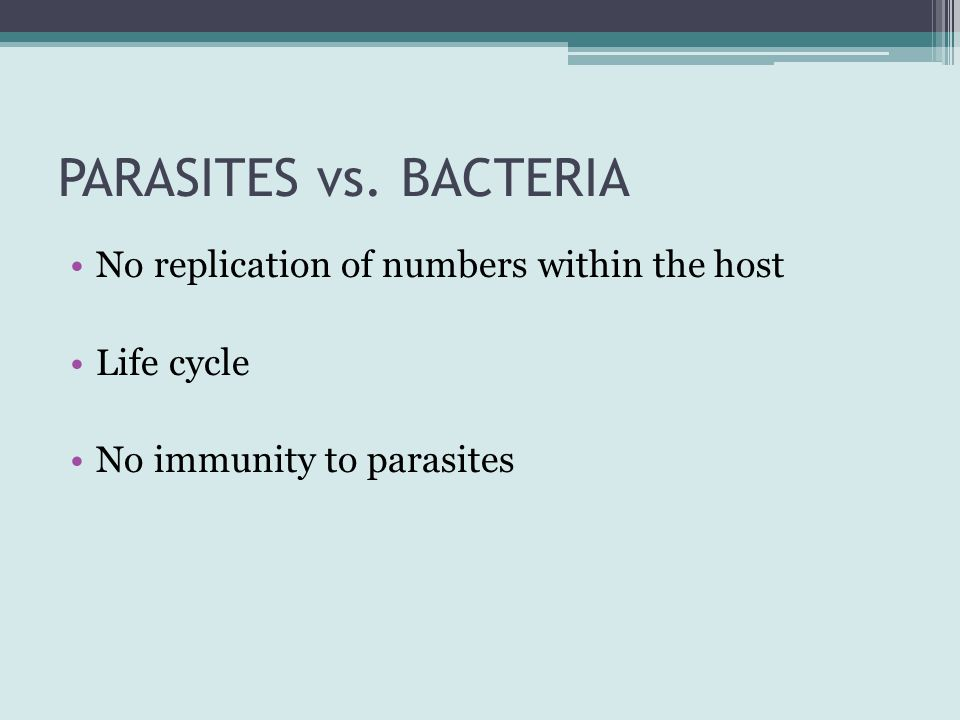 PARASITES vs. BACTERIA No replication of numbers within the host