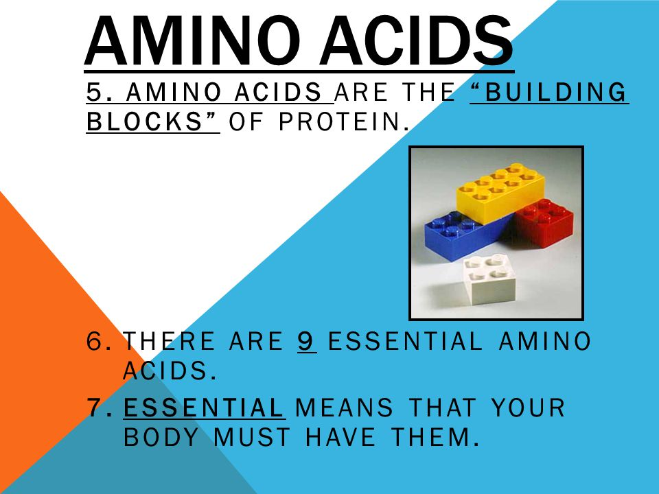 Amino Acids 5. Amino acids are the building blocks of protein.