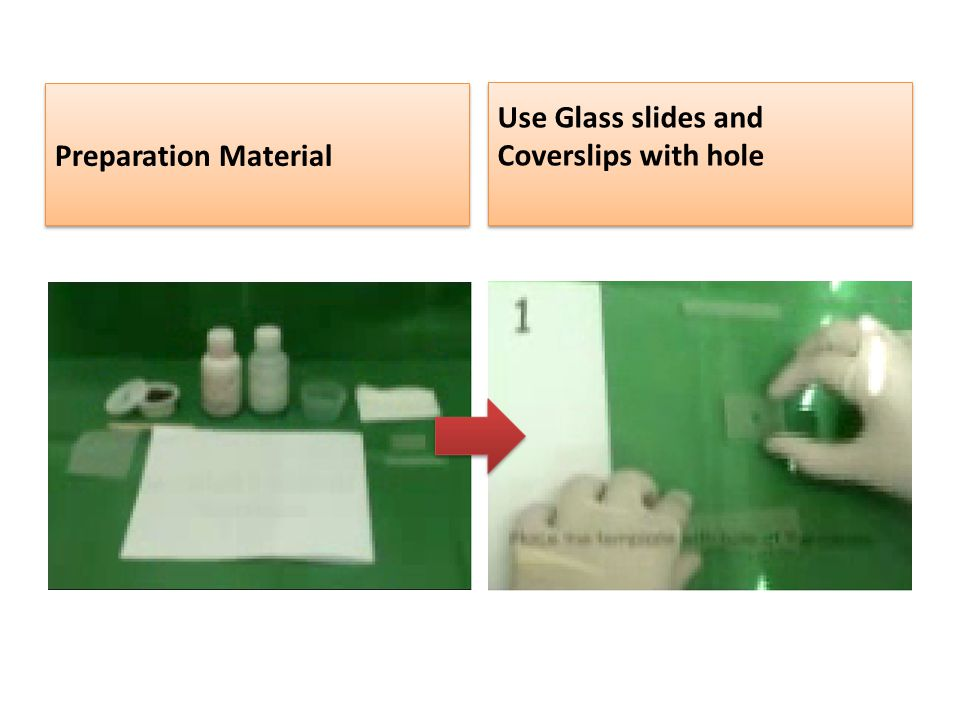 Preparation Material Use Glass slides and Coverslips with hole