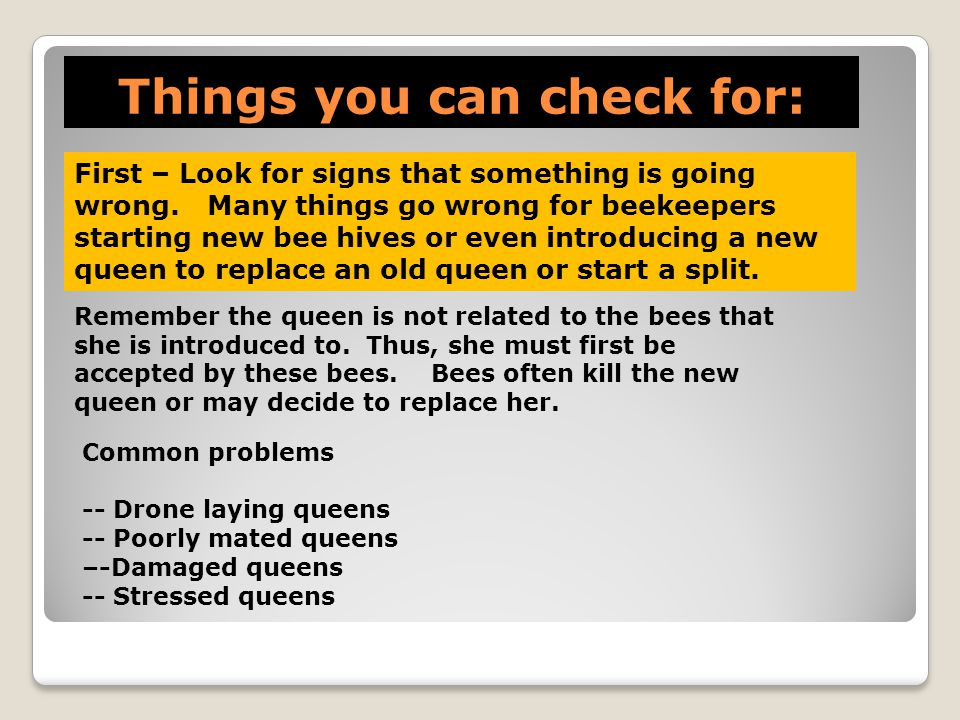 Things you can check for: