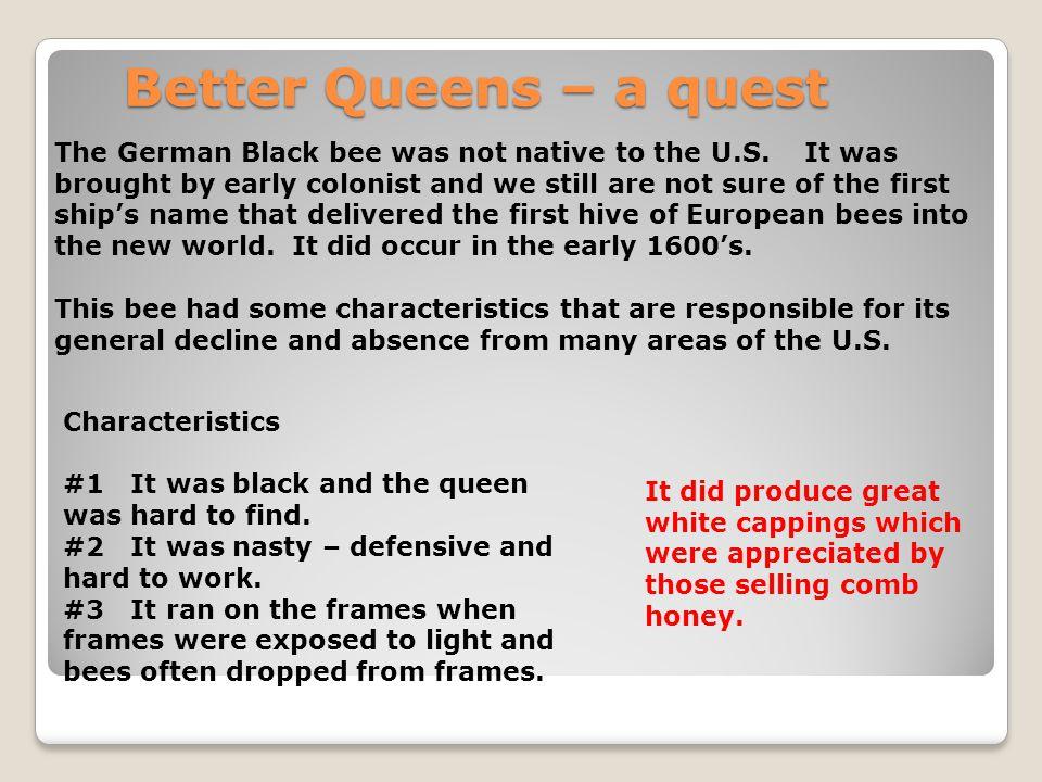 Better Queens – a quest