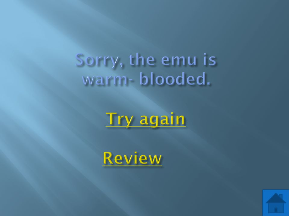 Sorry, the emu is warm- blooded. Try again Review