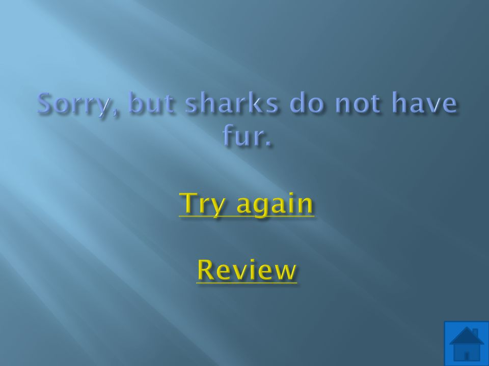 Sorry, but sharks do not have fur. Try again Review