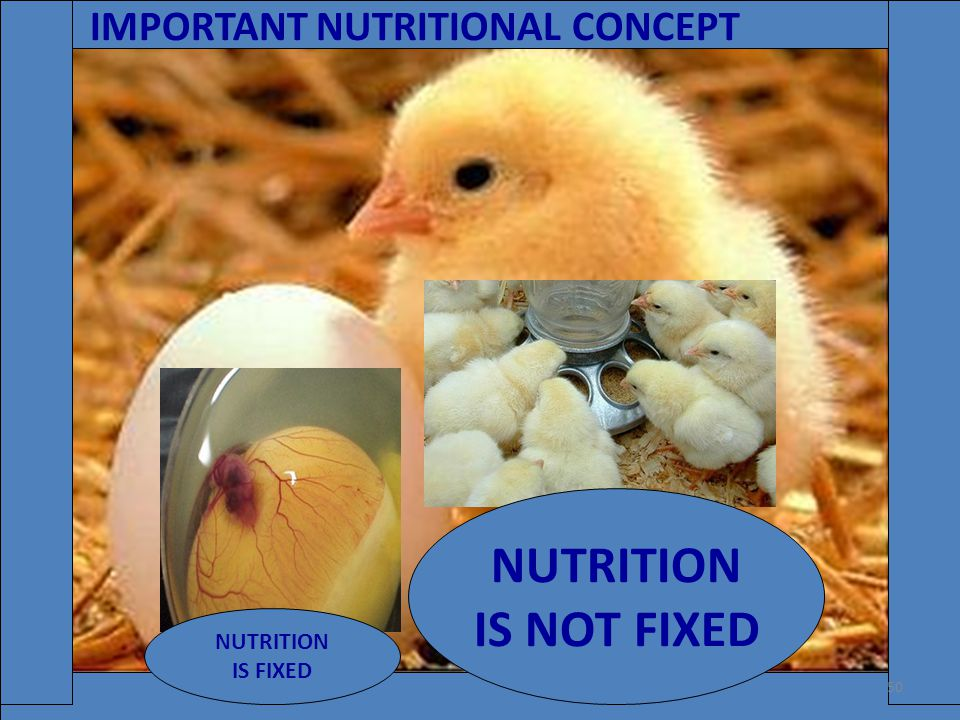 NUTRITION IS NOT FIXED IMPORTANT NUTRITIONAL CONCEPT NUTRITION
