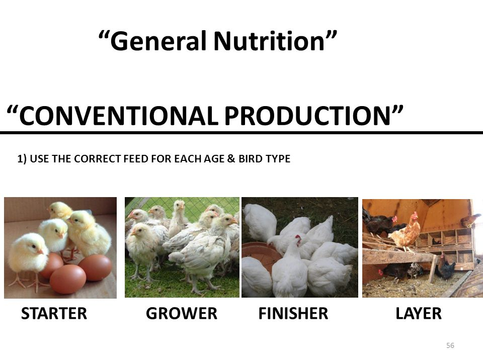 CONVENTIONAL PRODUCTION