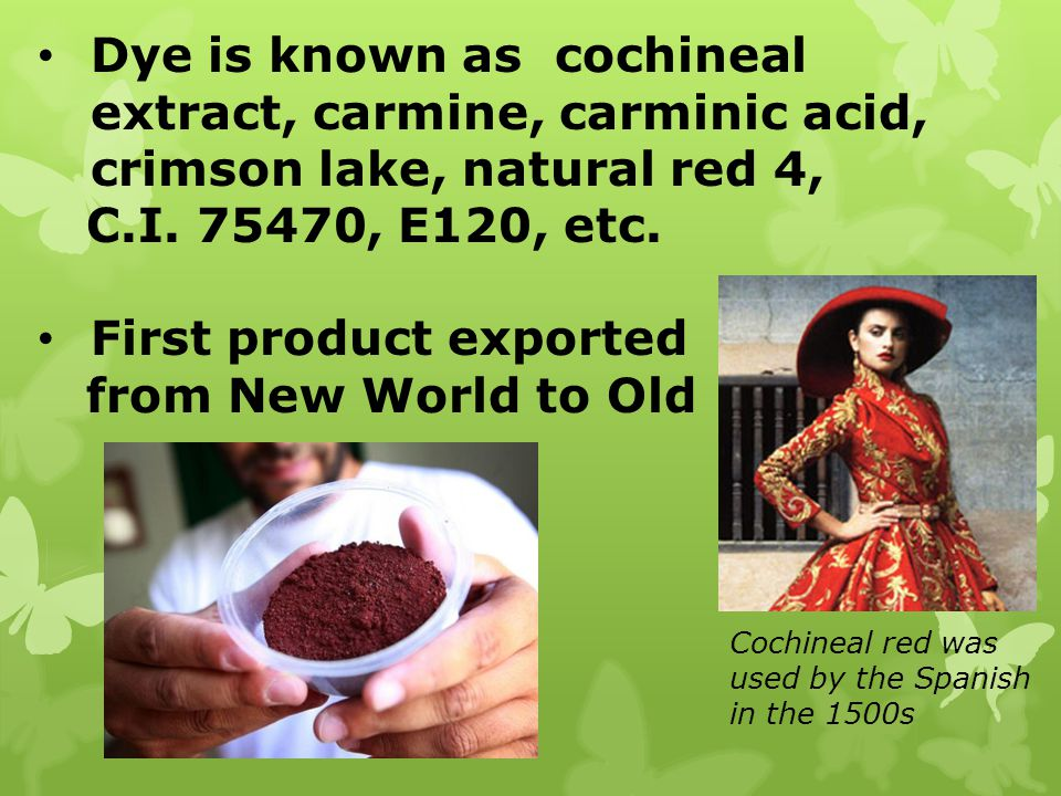 First product exported from New World to Old