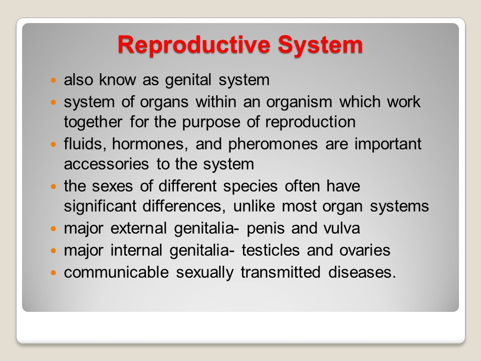 Reproductive System also know as genital system