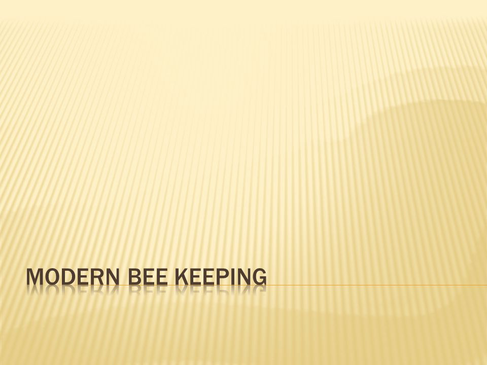Modern bee keeping