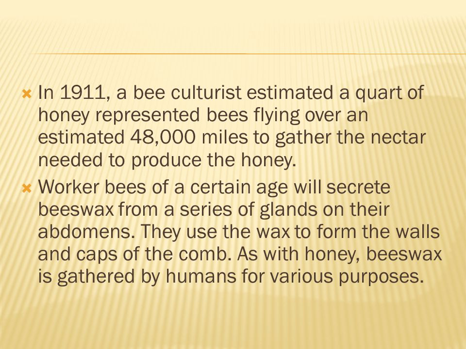 In 1911, a bee culturist estimated a quart of honey represented bees flying over an estimated 48,000 miles to gather the nectar needed to produce the honey.