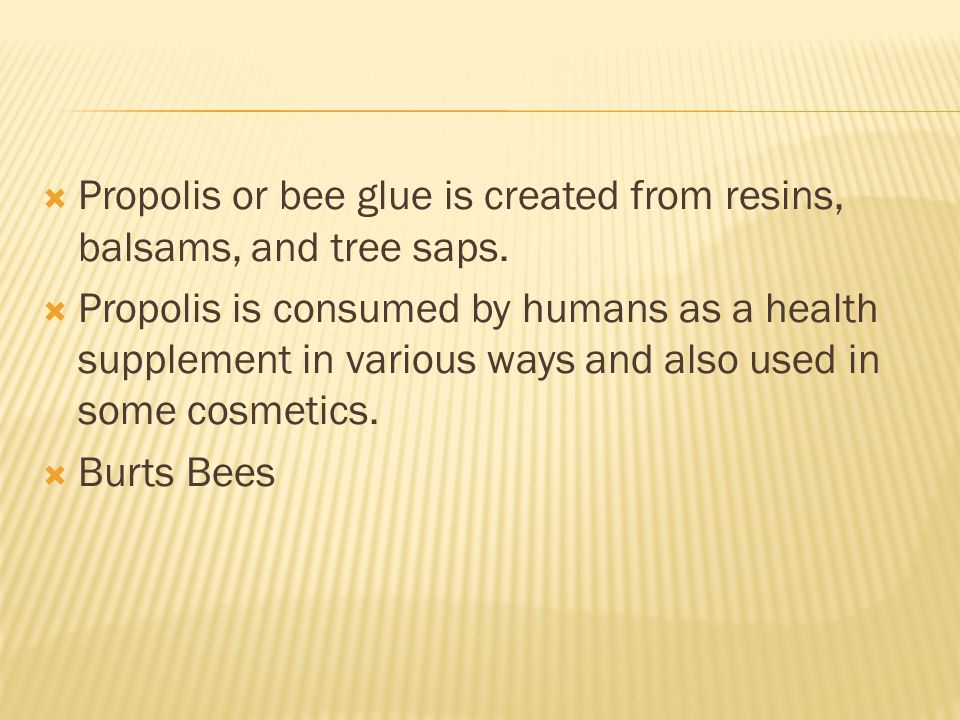 Propolis or bee glue is created from resins, balsams, and tree saps.