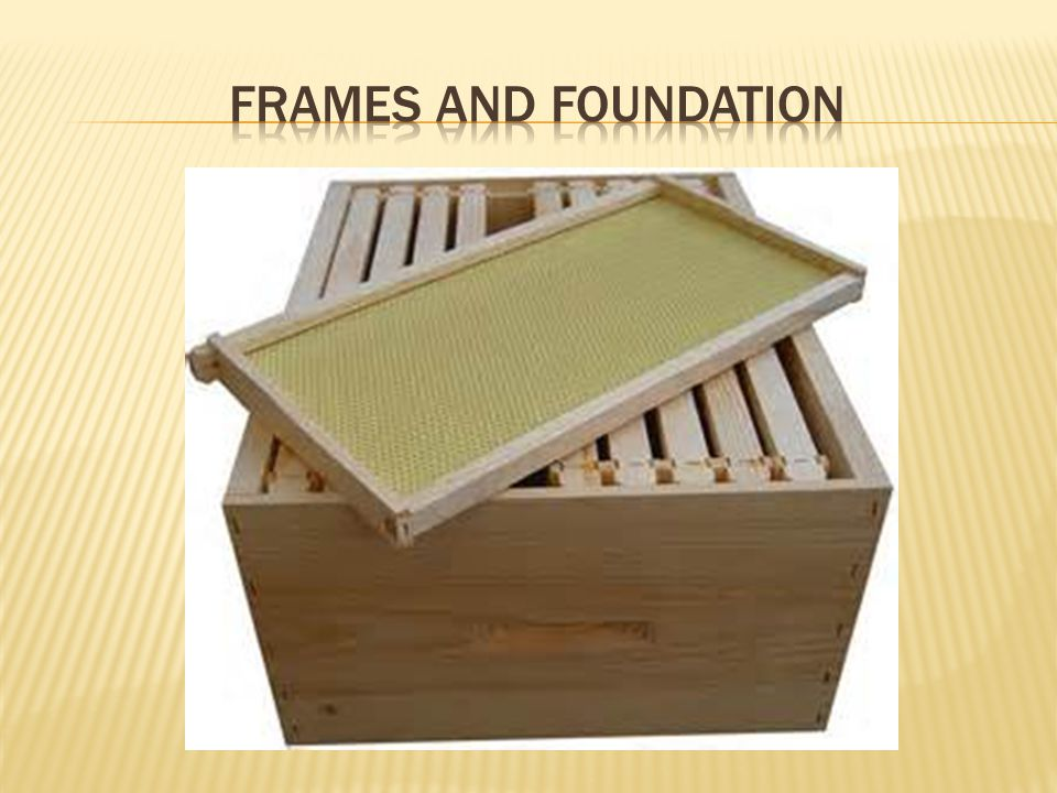 Frames and foundation