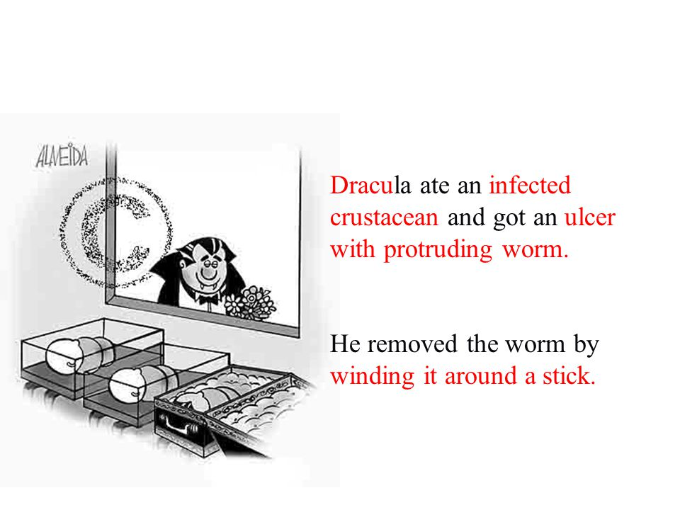 Dracula ate an infected crustacean and got an ulcer with protruding worm.