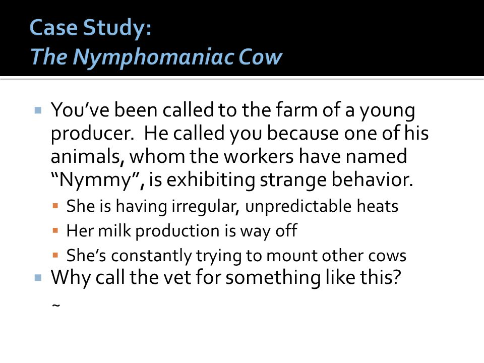 Case Study: The Nymphomaniac Cow