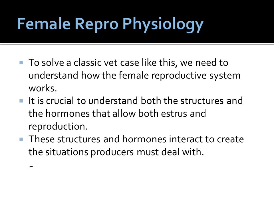 Female Repro Physiology
