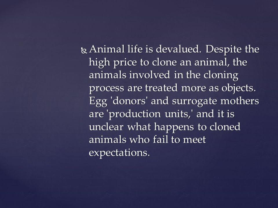 Animal life is devalued