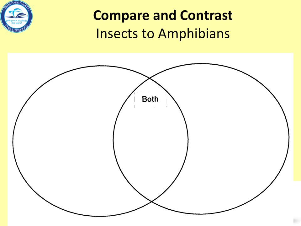 Compare and Contrast Insects to Amphibians