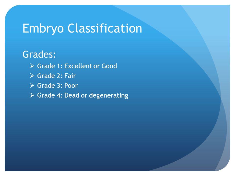 Embryo Classification