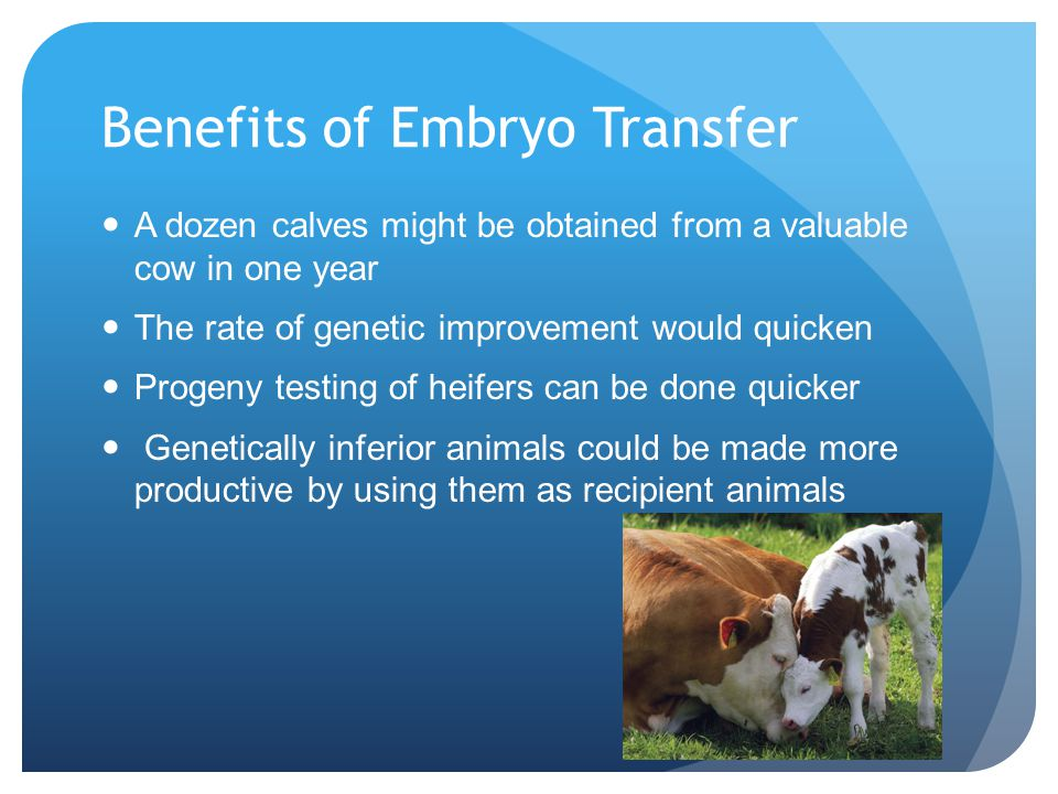 Benefits of Embryo Transfer