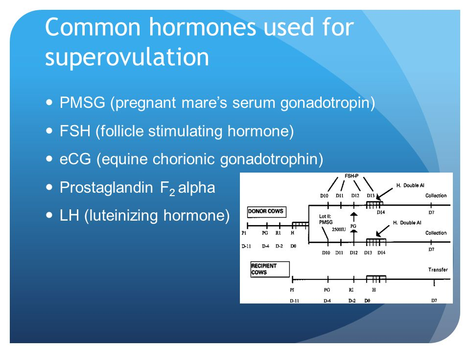 Common hormones used for superovulation