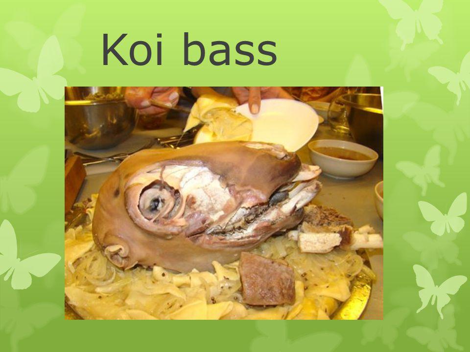 Koi bass
