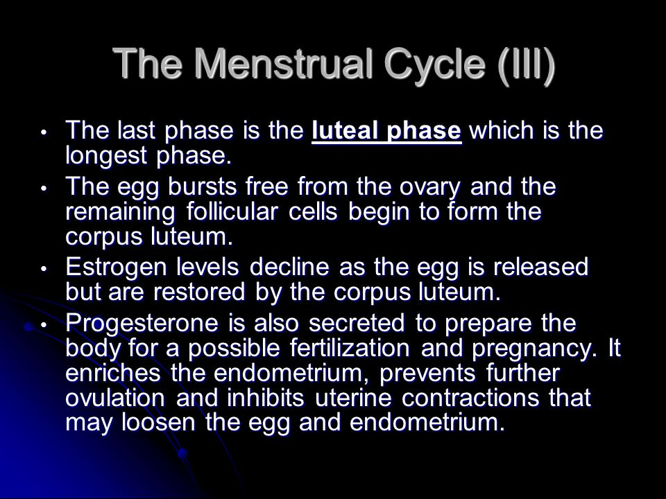 The Menstrual Cycle (III)
