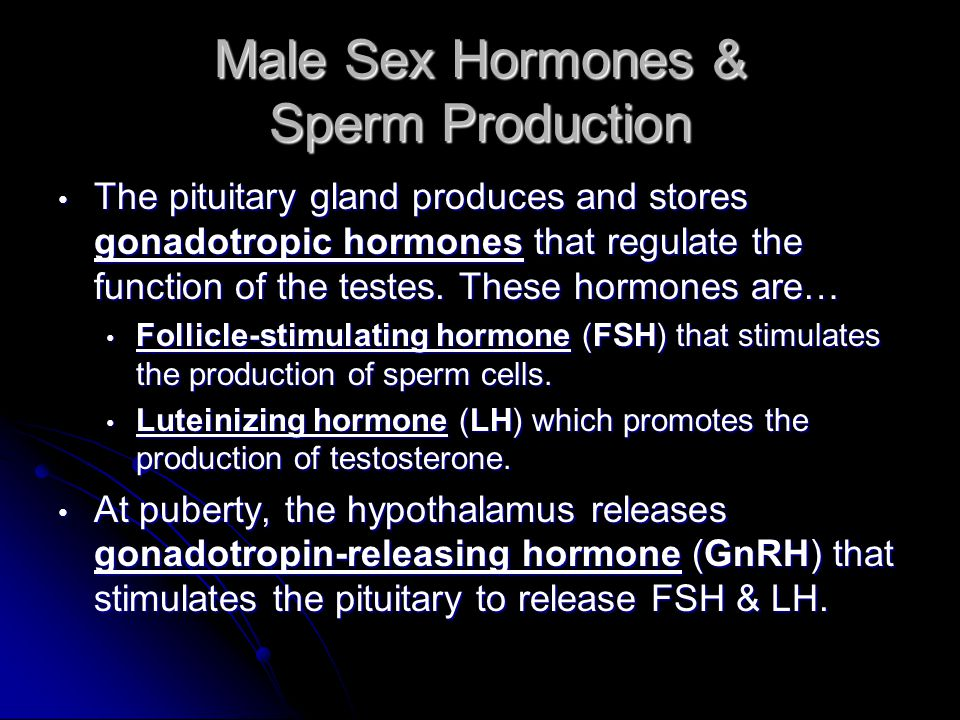 Male Sex Hormones & Sperm Production