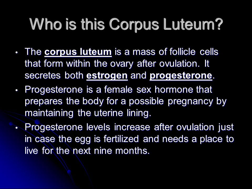 Who is this Corpus Luteum