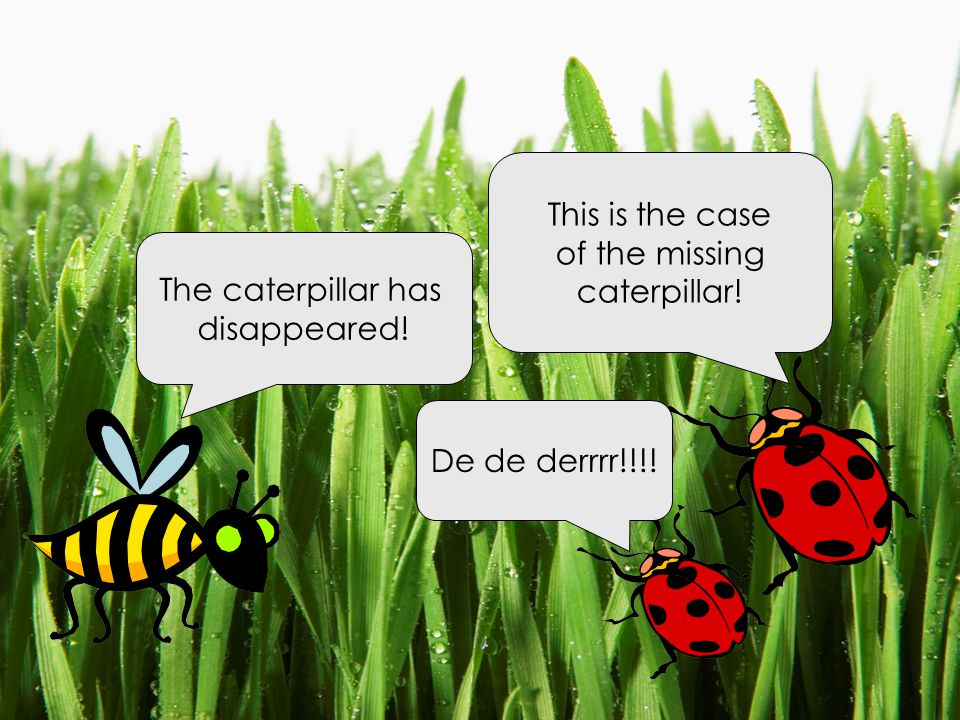 This is the case of the missing caterpillar! The caterpillar has disappeared! De de derrrr!!!!
