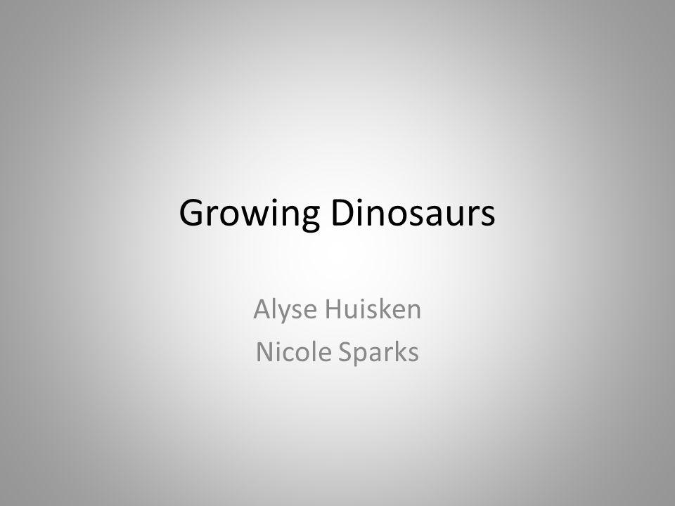 Alyse Huisken Nicole Sparks