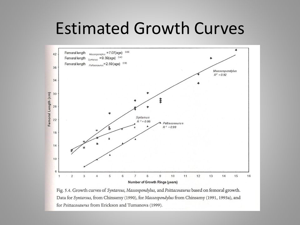 Estimated Growth Curves