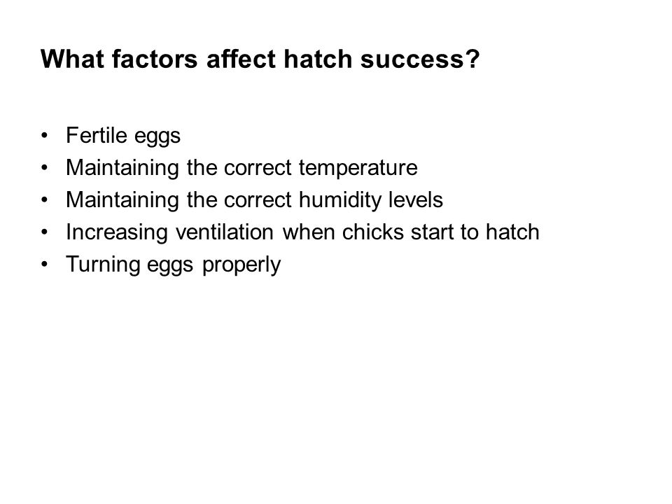 What factors affect hatch success