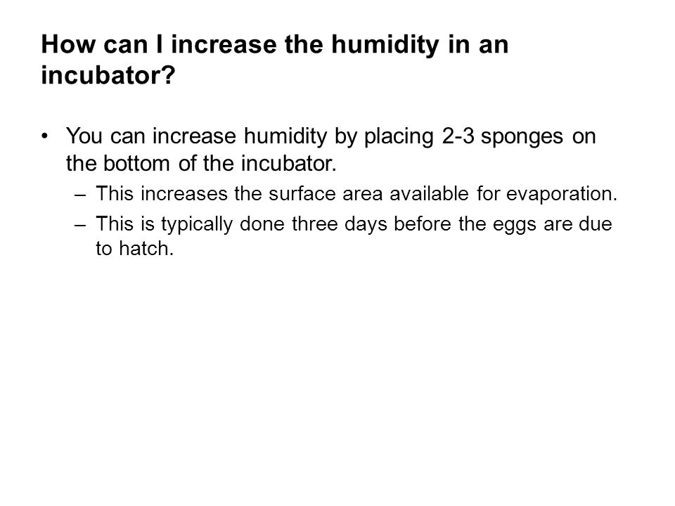 How can I increase the humidity in an incubator