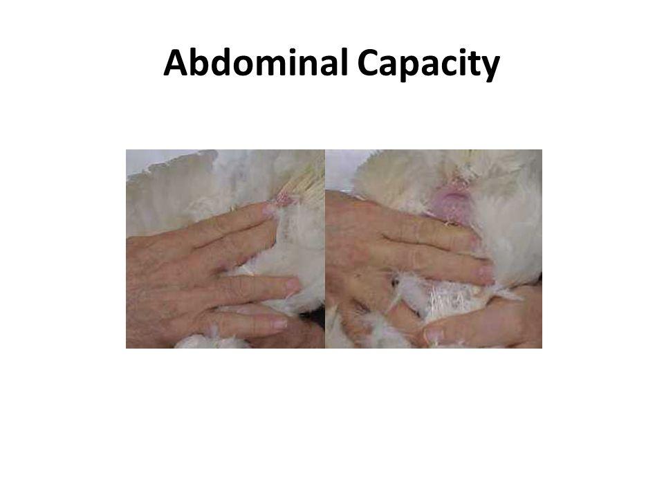 Abdominal Capacity 2 x 2 finger spread POOR Tony Pescatore